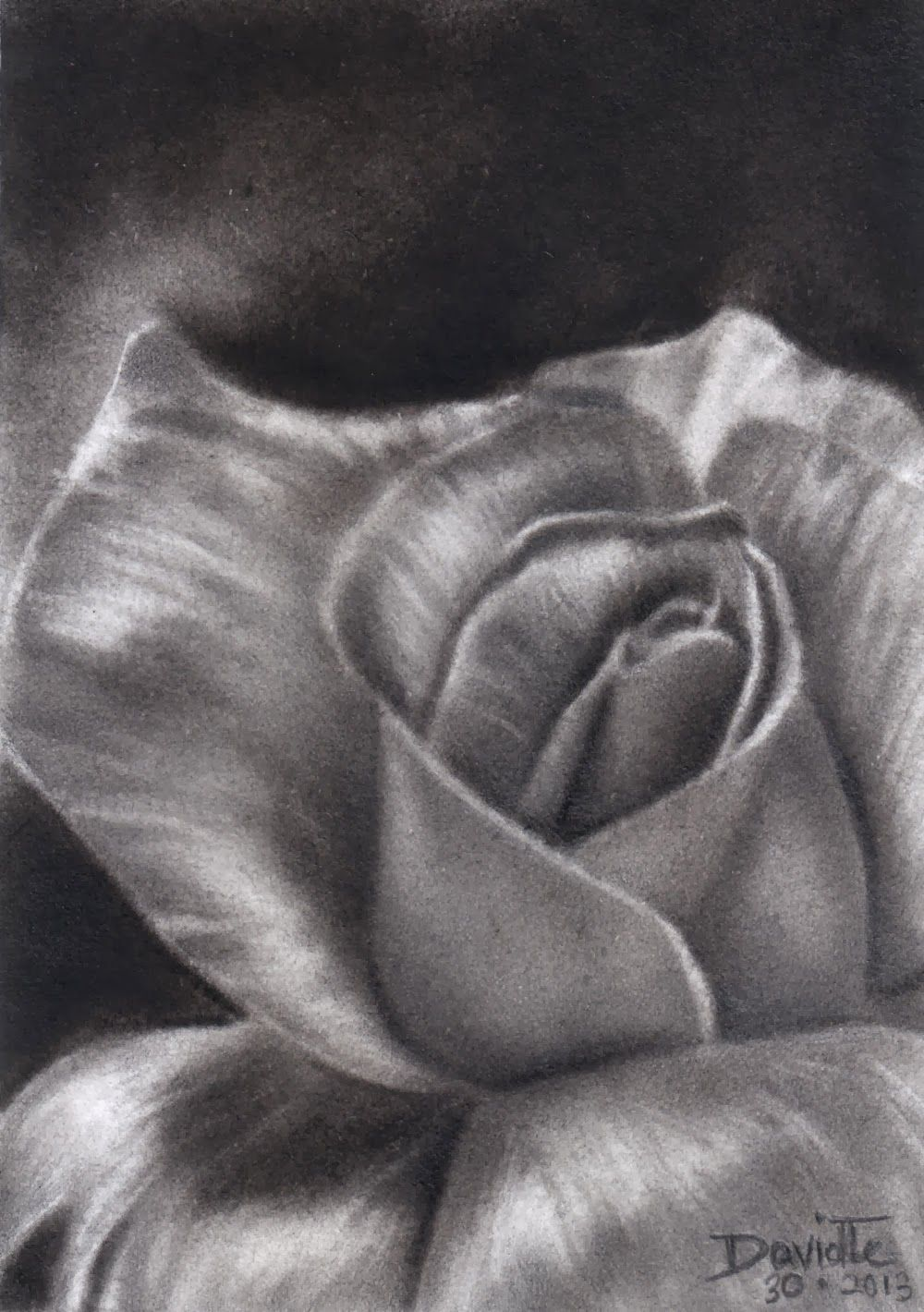 jpg freeuse library Drawings google search painting. Drawing charcoal flower