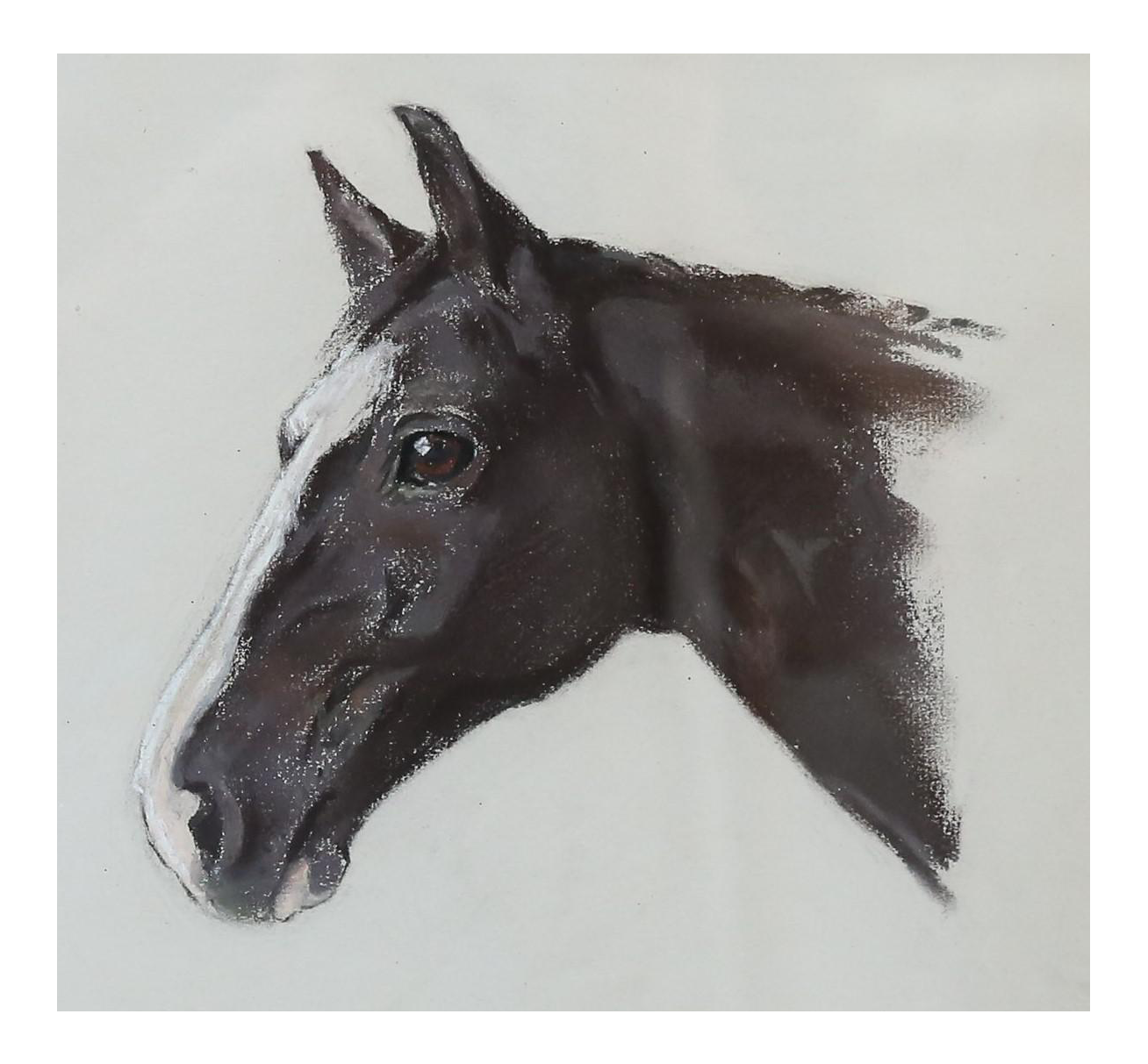 picture royalty free stock Equestrian race portrait painting. Drawing charcoal horse