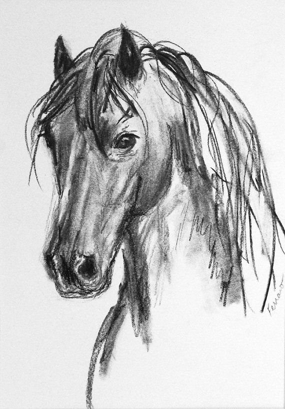 clip freeuse download Original introspective by . Drawing charcoal horse