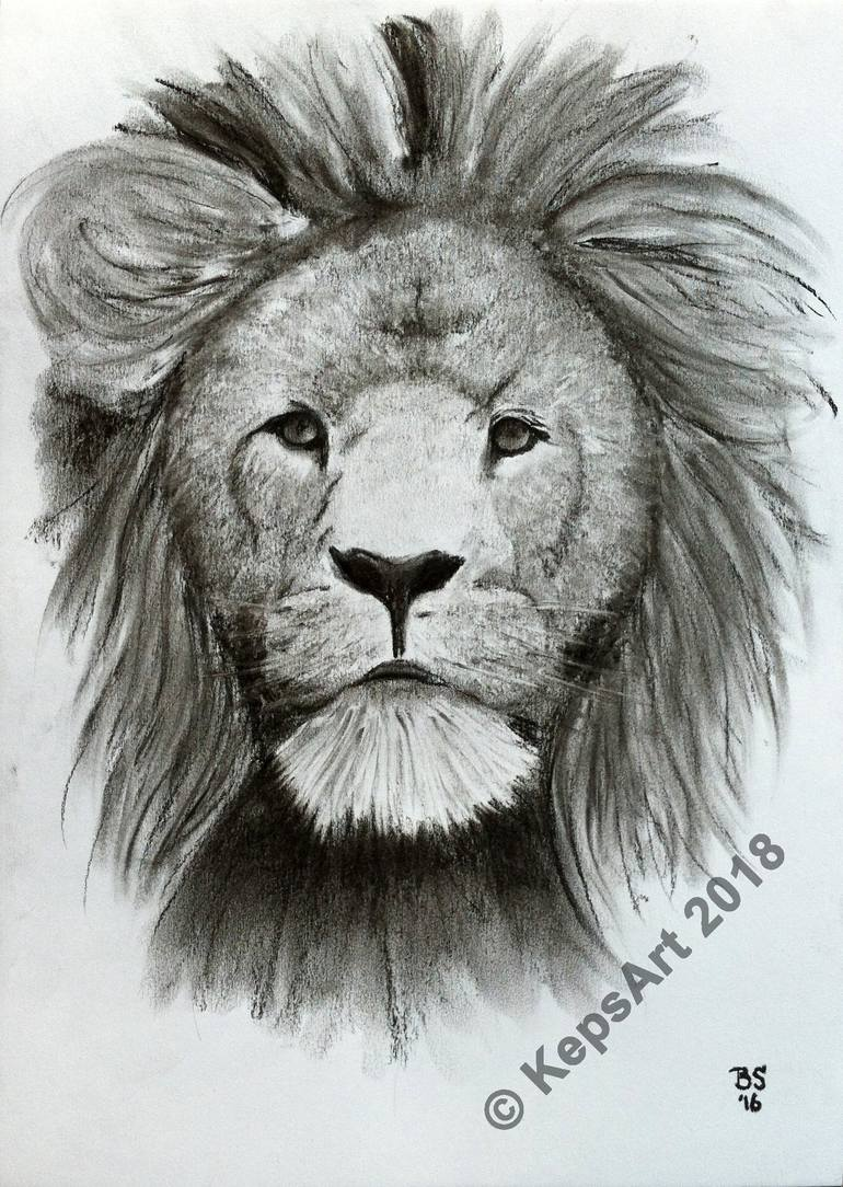 picture freeuse library Head portrait in . Drawing charcoal lion