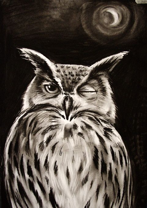 image download Drawing charcoal owl. Easy google search and