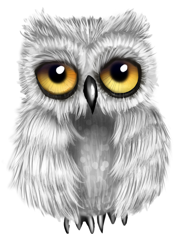 picture library download Drawing charcoal owl.  png and album