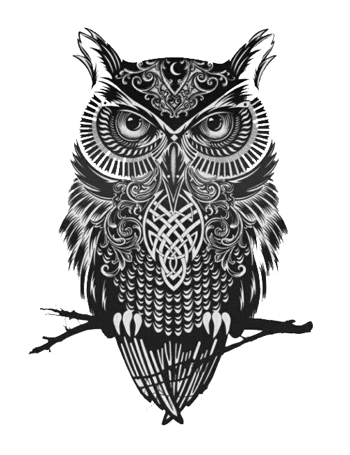 banner black and white download Drawing charcoal owl. Panda vaidosa raquel memeli