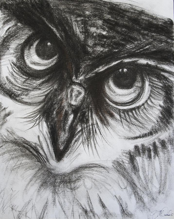 image free download Drawing charcoal owl.