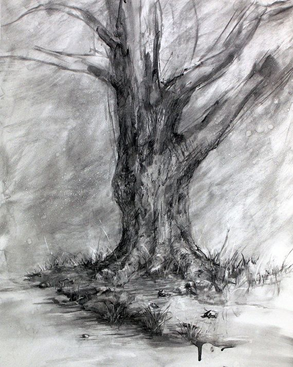 picture transparent download Winter s shadow fine. Drawing charcoal tree