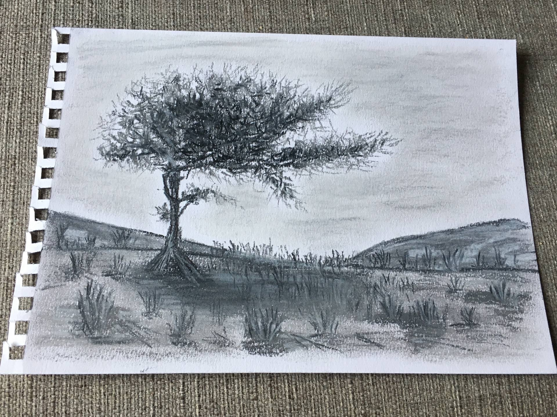 black and white library Enchanted in . Drawing charcoal tree