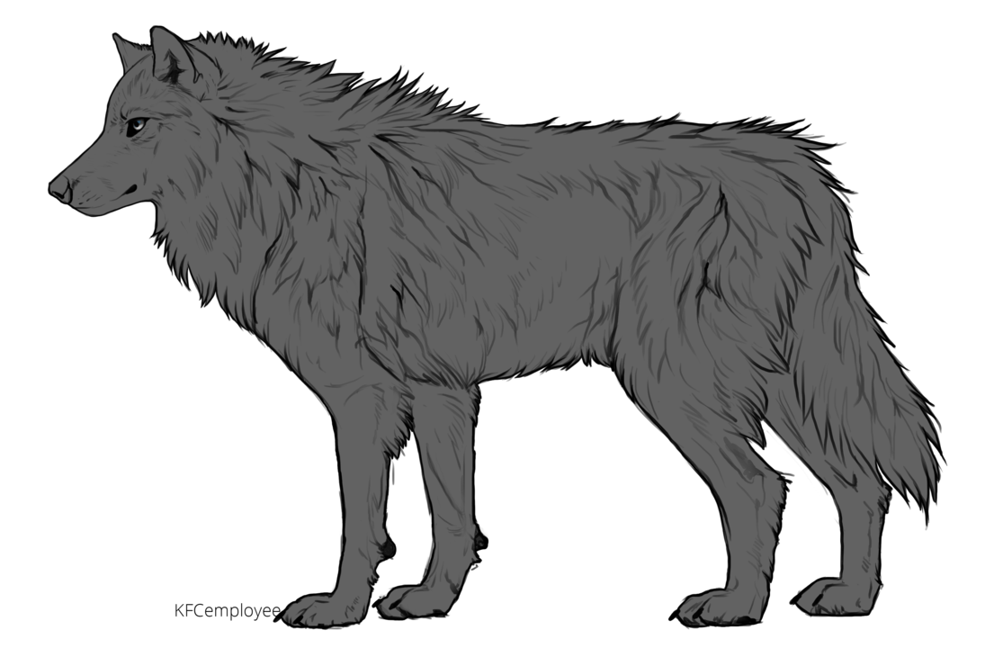 clip library stock Drawing charcoal wolf. Collection of free fur