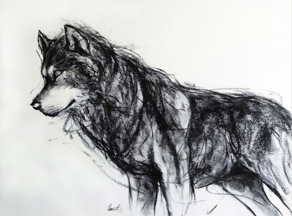 vector royalty free library Giclee art print by. Drawing charcoal wolf