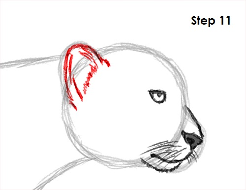 graphic royalty free library How to Draw a Cheetah