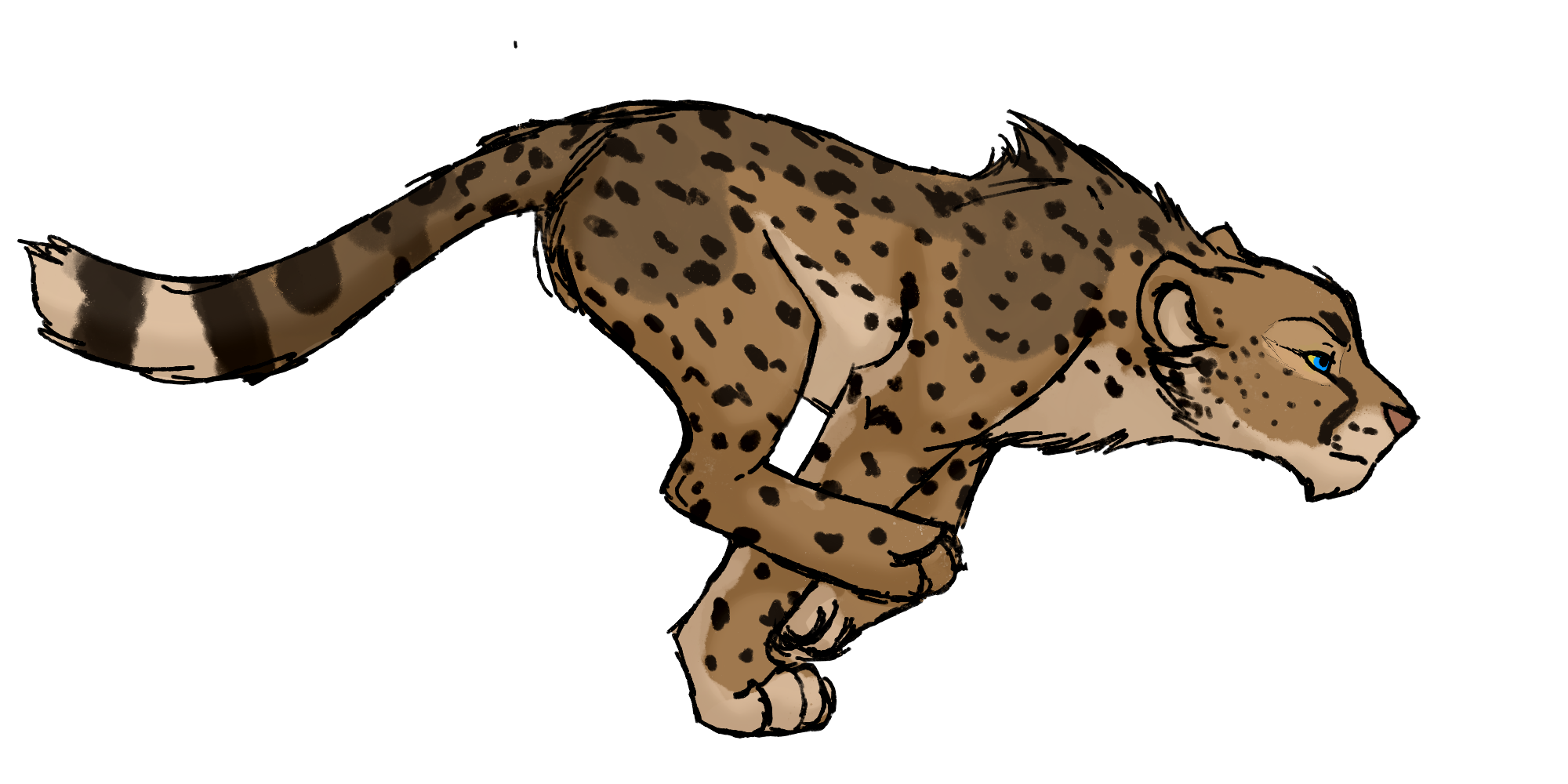 jpg free stock Collection of free Cheetah drawing king