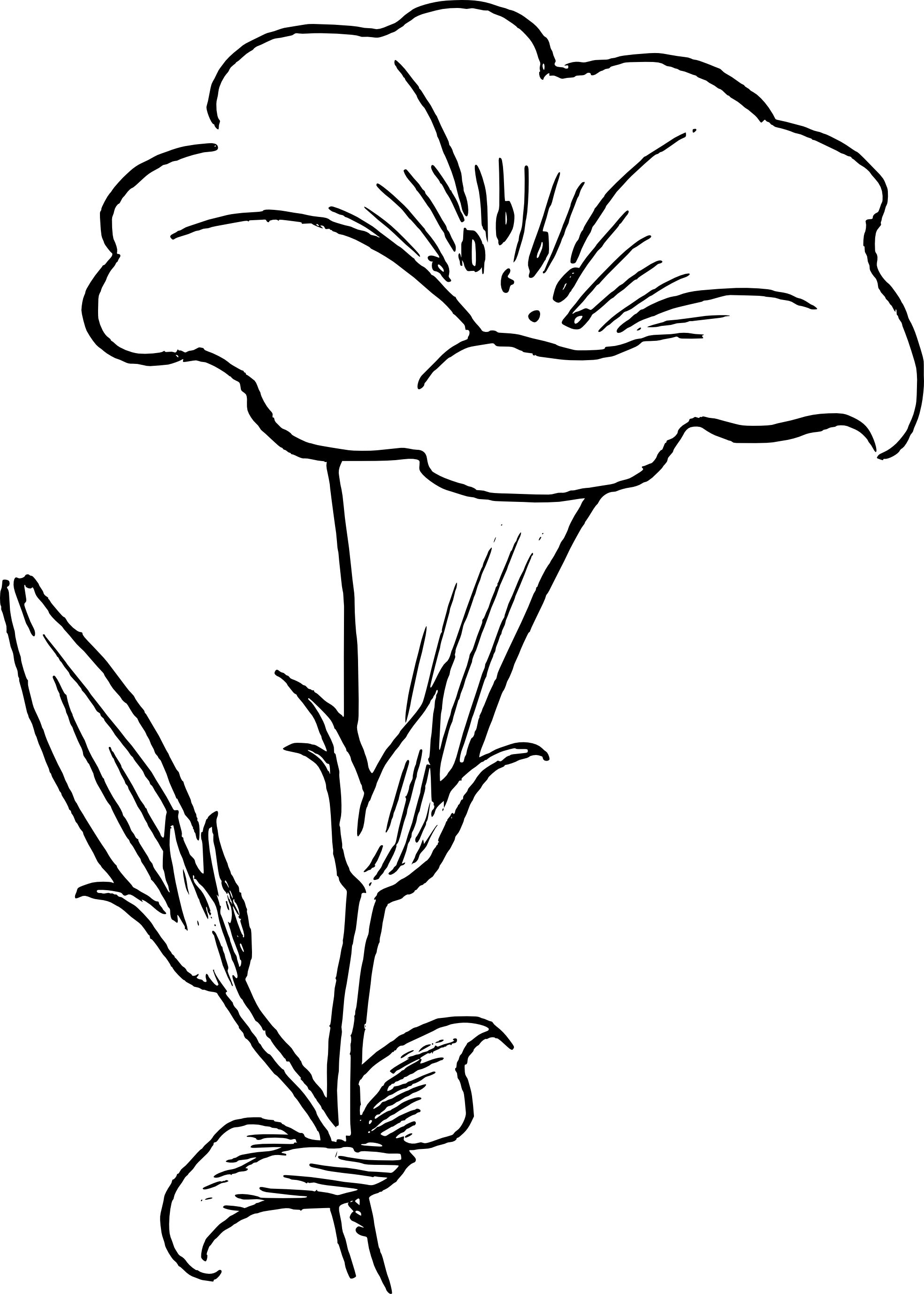 clip Black And White Flower Drawing