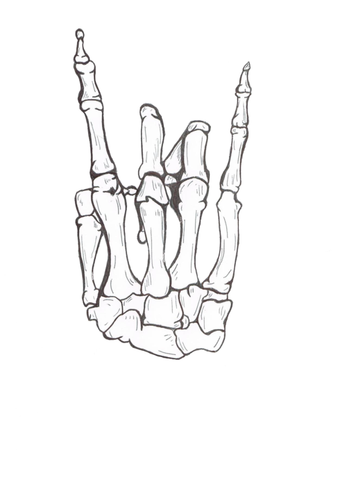 clipart transparent stock drawing Cool rock Awesome hand Sketch skeleton bones hang loose