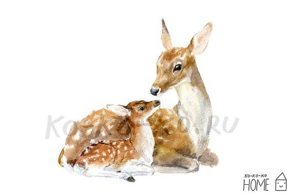 graphic transparent stock Drawing deer mother. Animal poster a unframed