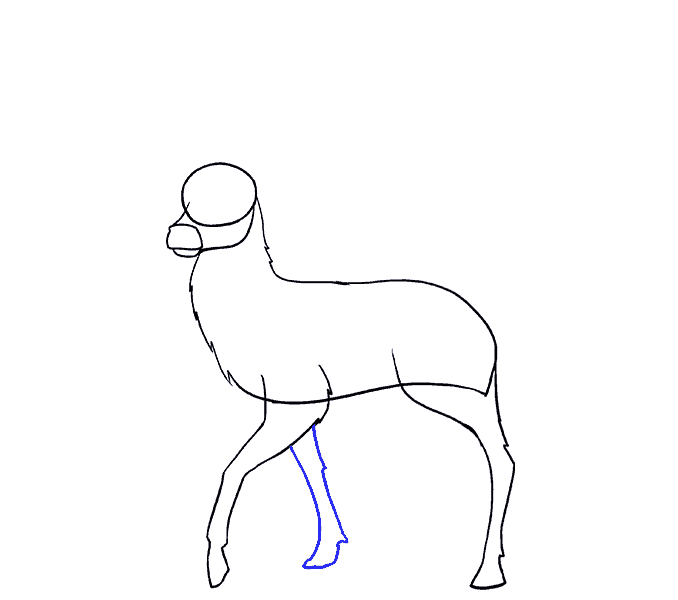 png transparent download How to Draw a Deer in a Few Easy Steps