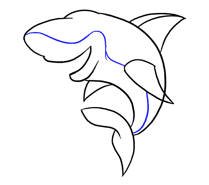 black and white Collection of free Dolphin drawing graffiti