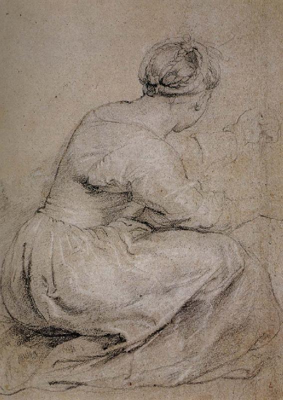 graphic transparent stock Peter Paul Rubens