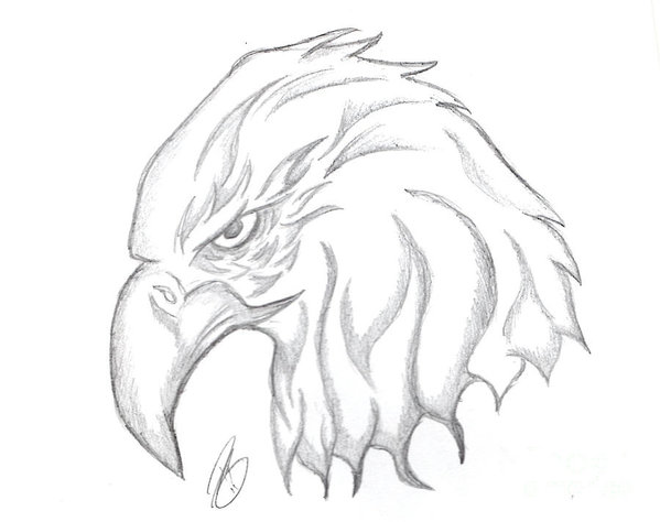 clip free Head poster . Drawing eagle