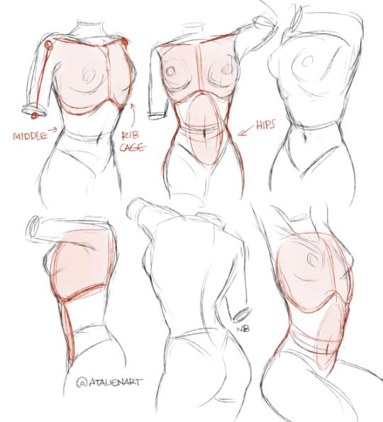 clipart transparent stock Drawing females. I struggle tumblr