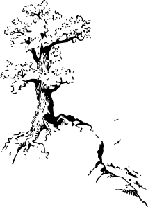 png free stock Tree On Top Of Hill Clip Art at Clker