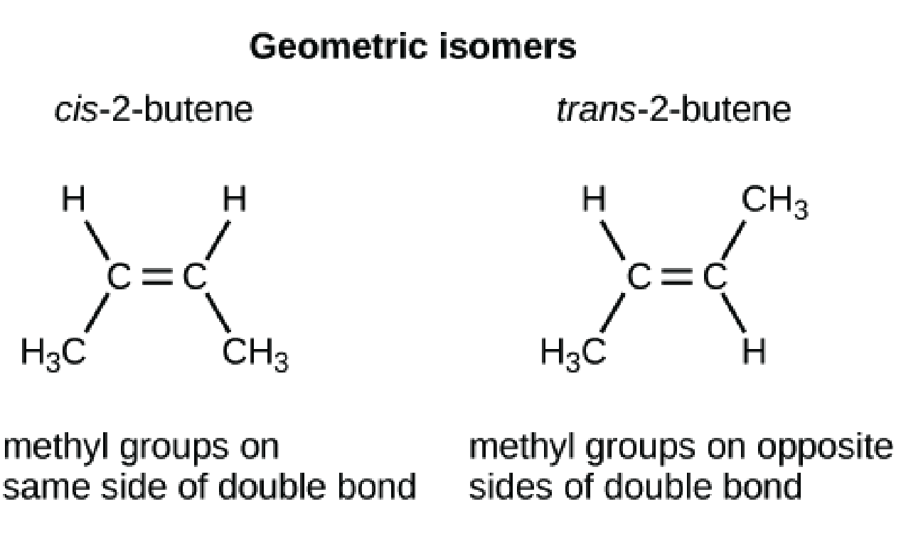 image library download Hydrocarbon structures and isomers