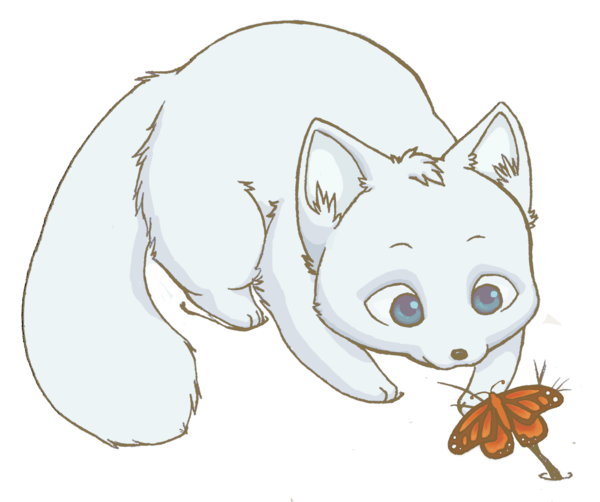 jpg library library  collection of cute. Drawing kawaii arctic fox