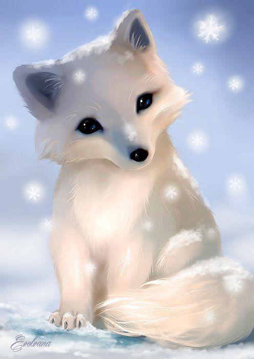 svg library download Pin by jayli capasso. Drawing kawaii arctic fox