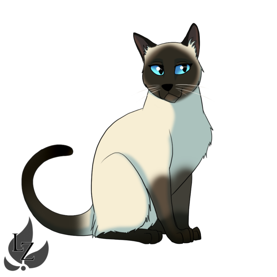 vector freeuse library kittens drawing siamese cat #98570279