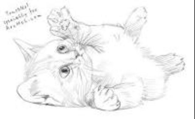 vector black and white library Playful kitten sketch