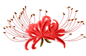 svg download drawing lily red spider #94500423