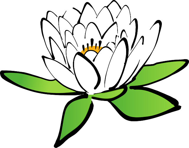 clipart library library Water Lily drawing clipart