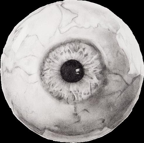 image free eye eyeball creepy closeup drawing interesting art gray