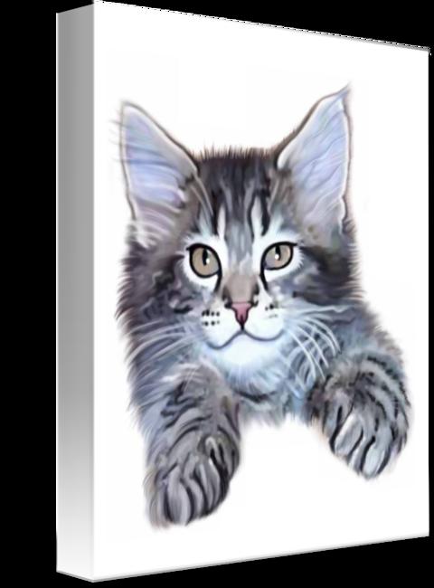 clip art royalty free library Fuzzy Maine Coon Kitten by Brandi Jasmine