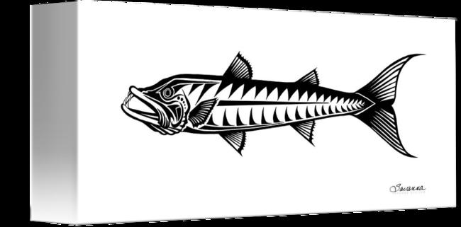 clipart library stock Barracuda