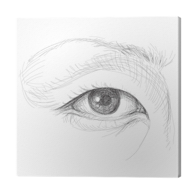 vector royalty free Asian eye sketch not. Drawing mirror realistic
