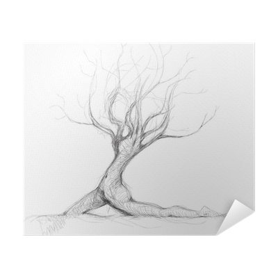 jpg freeuse Drawing mirror realistic. Tree like woman daphne