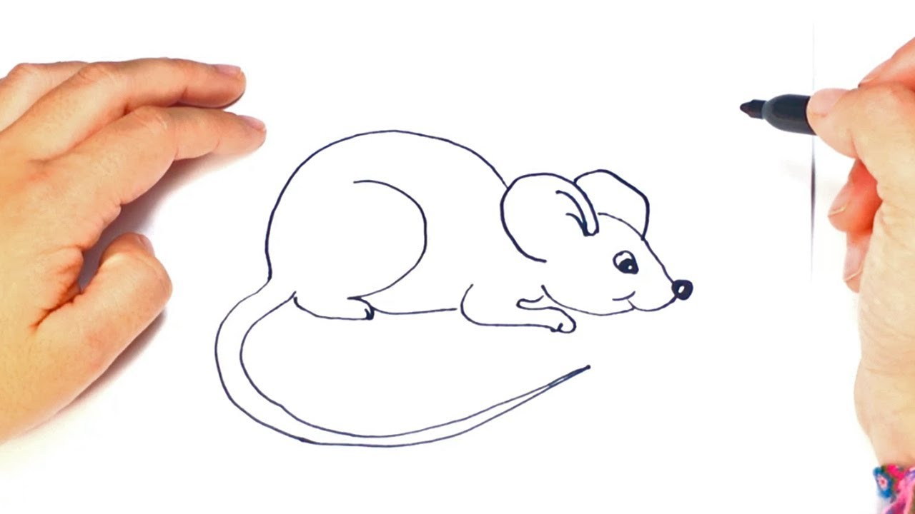 svg royalty free stock How to draw a. Drawing mouse