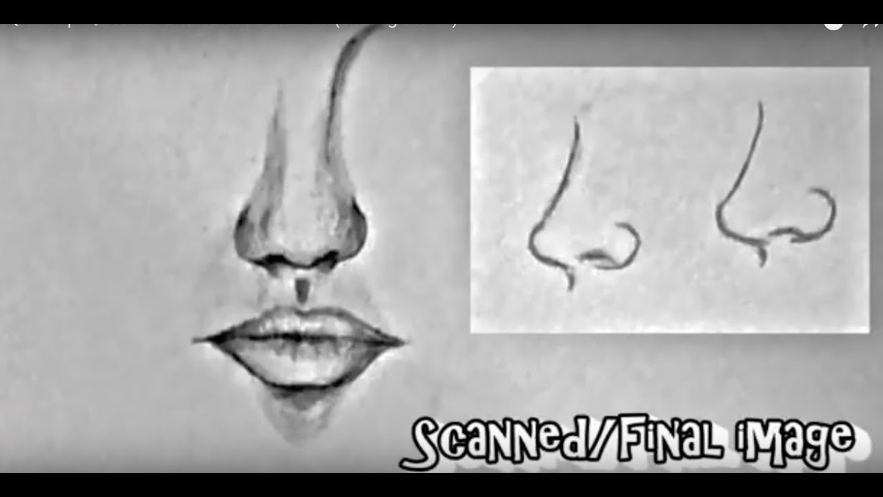 jpg royalty free library Drawing mouth nose. How to draw for