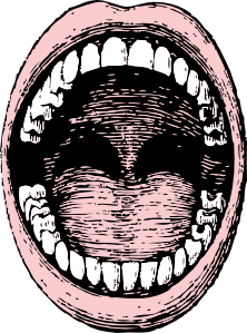royalty free stock Open clip art at. Drawing mouth sketch