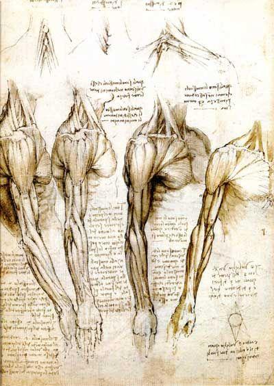 svg library library da Vinci