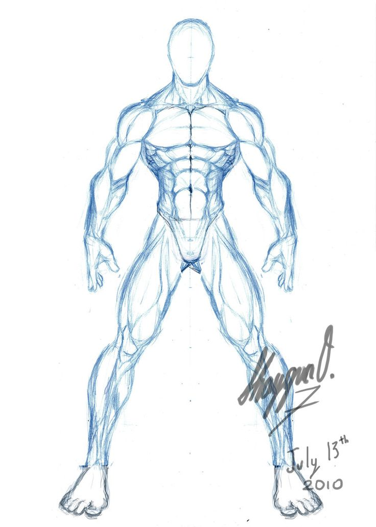 image library stock Buff Man Drawing at GetDrawings