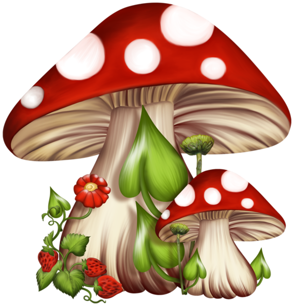 image royalty free Toadstools are linked to fairies