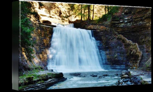 vector At stony brook park. Drawing nature waterfall