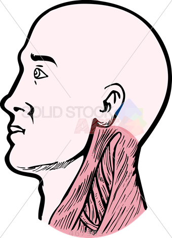 picture black and white Stock illustration of old. Drawing neck