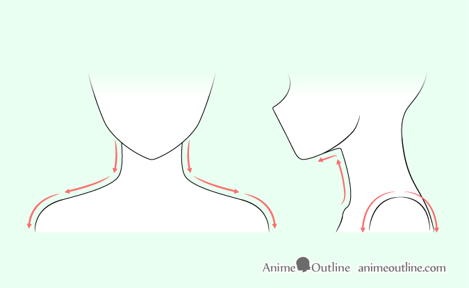 picture free download Drawing necks anime. Neck at paintingvalley com