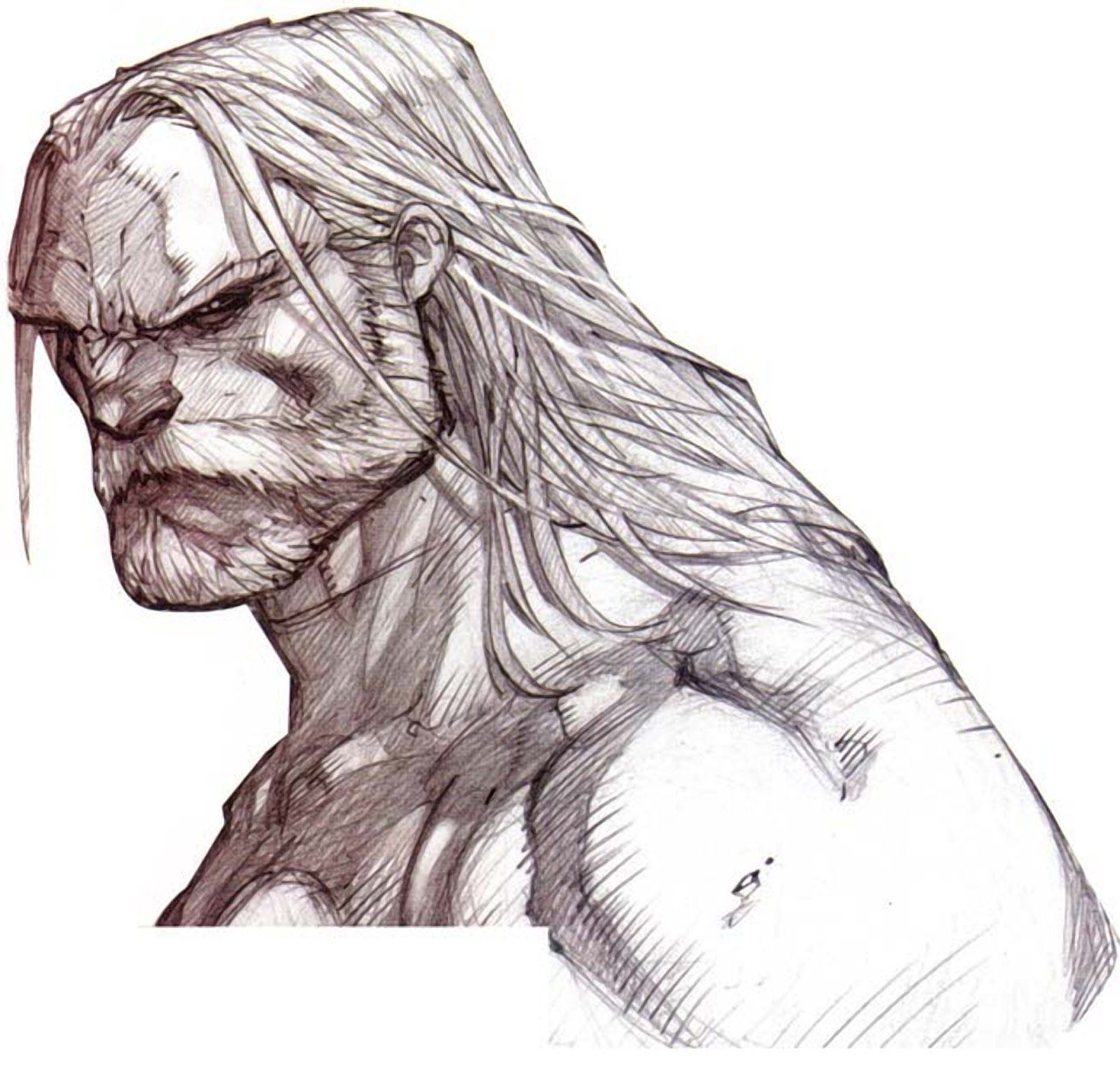 image royalty free A wolf illustrations blog. Drawing neck comic book
