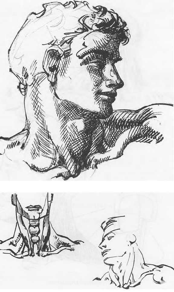 royalty free stock How to draw male. Drawing necks adam's apple