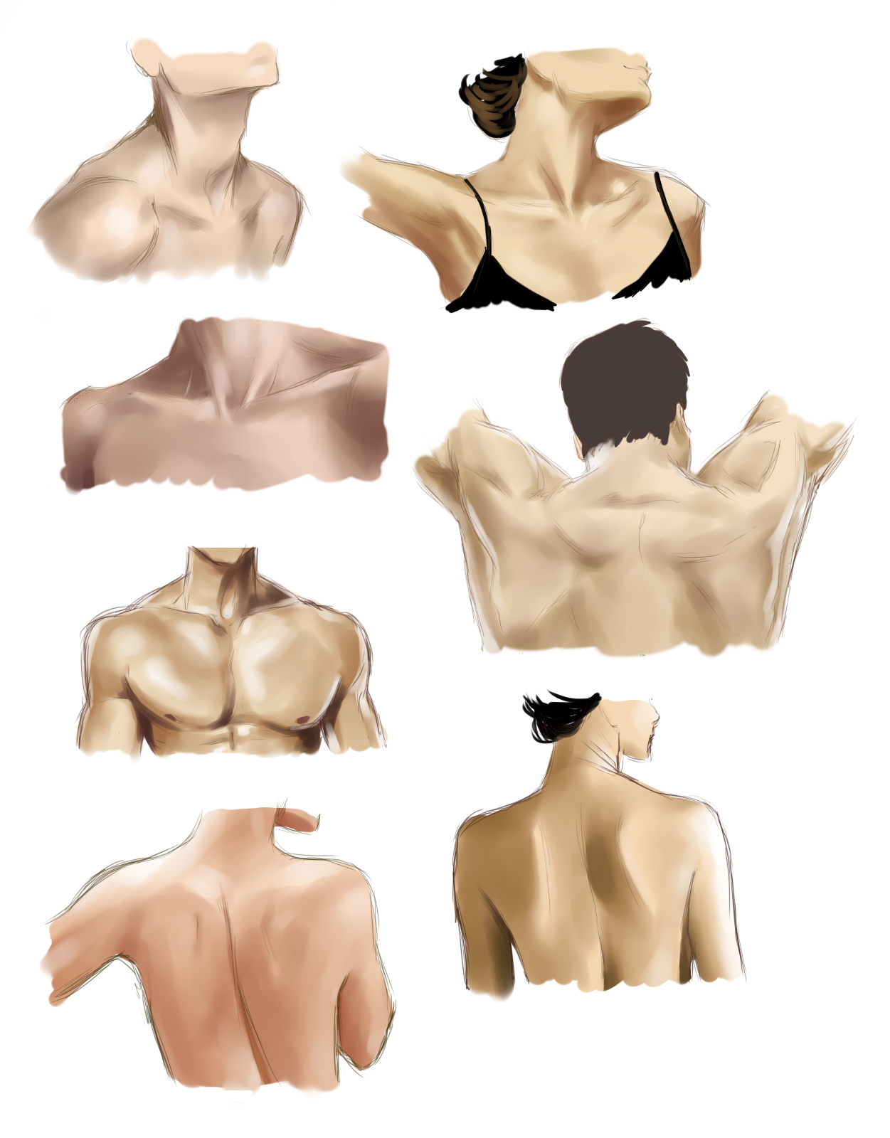 clipart Shoulders and neck study. Drawing necks female