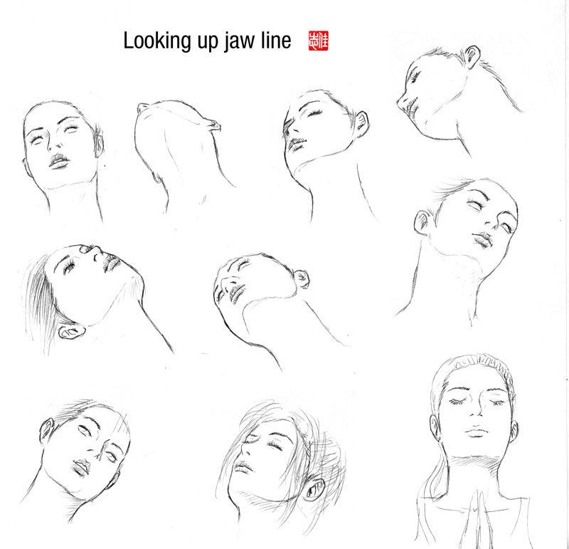 jpg transparent stock Looking up jaw line. Drawing necks jawline