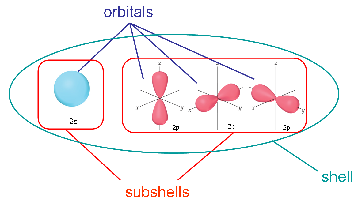 vector library Drawing orbitals subshell. Quantum chemistry difference between