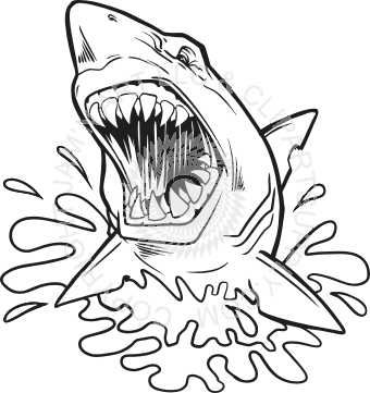 clipart royalty free Shark head at getdrawings. Drawing out